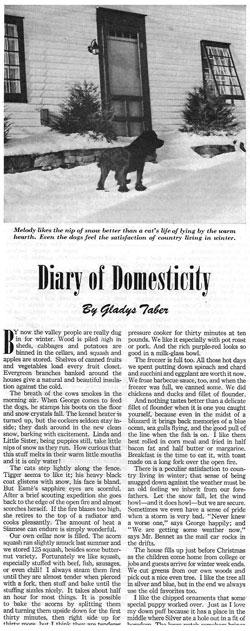 JsDiary-of-Domesticity